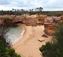 Loch ard Gorge by Beryl  Woodfield
