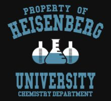 HEISENBERG UNIVERSITY by nadievastore