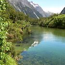 Milford Track 6 by PhotosByG