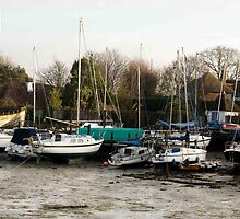 Row of boats by Beechmead