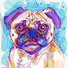 Pug drawing by Gwenn Seemel
