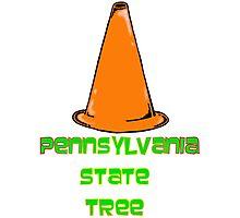 Pennsylvania State Tree Photographic Print