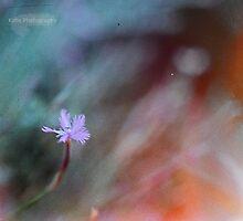 Tiny flower by katie-k