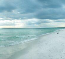 Florida Beach by thekohakudragon