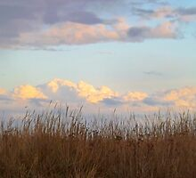 Clouds of the Dungeness Bay by Moonamie