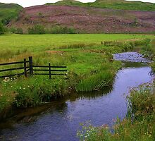 Stream in Kilmartin  by lezvee