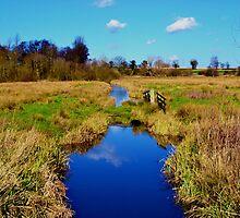 River Chet, Norfolk by SaraHardman