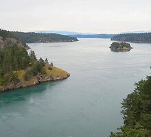 Deception Pass by Mike Cressy