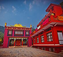 Buddhist monastery in Rewalsar. by Anna Alferova