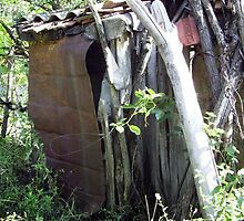 The Toilet At Our House in Barda, Romania by Dennis Melling