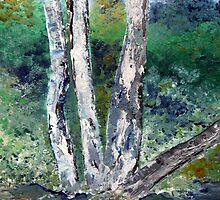 Eucalyptus / Bloekombome by Elizabeth Kendall