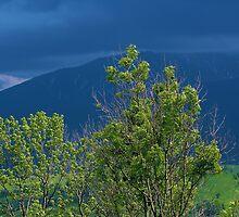 view on Tatras by Grazyna W.