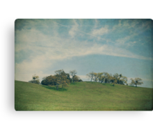 Scattered Across the Hilltop Canvas Print