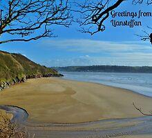 Scott's Bay, Llansteffan - Postcard or Greeting Card by Paula J James