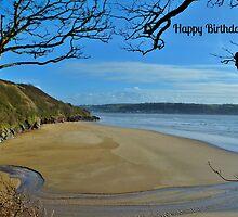 Scott's Bay, Llansteffan - Birthday Card by Paula J James