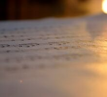 Light Music by OneWayPho