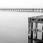 St Kilda Pier, Melbourne, Victoria, Australia by paulsborrett