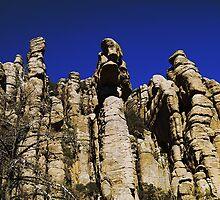 [38]Chiricahua by ptosis