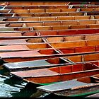 Cambridge Punts 2 by Veterisflamme