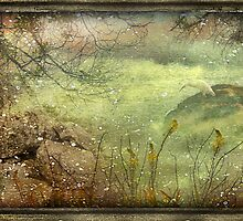 Memories of a Dream by DFLC Prints