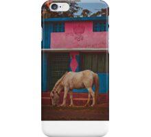 A mule eating grass. iPhone Case/Skin
