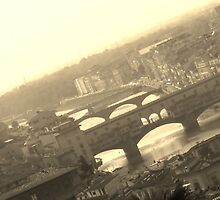Up the Florentine river by Peter Ames