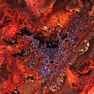 New Territory (Sarape Agate) by Stephanie Bateman-Graham