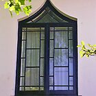 Regency House Window by lezvee