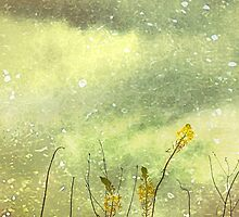 Dreamy Grunge Nature by DFLCreative