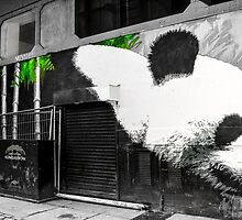Spray paint panda by Stevie B