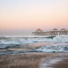 Huntington Beach State Park, Southern California by RondaKimbrow