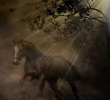 Ghost Horse by Lisa  Weber
