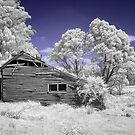 Infrared in colour by Hans Kawitzki
