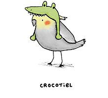 Crocotiel by Sophie Corrigan