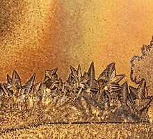 golden landscape - frost serie by Manon Boily