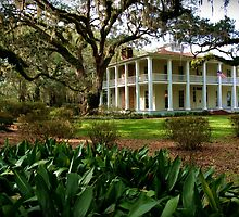 Mansion Antebellum Style by Henry Kowalski