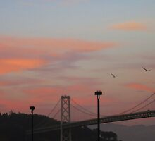 Bay Bridge Dusk by David Denny
