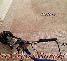 Carpet Cleaning in Raleigh by progreencarpet