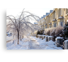 Frozen Suburbia in Colors Canvas Print