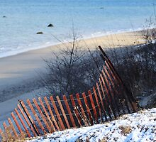 Winter at the Beach by Gilda Axelrod