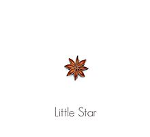 Little Star by Alyson Fennell