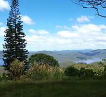View to the Hinze Dam Gold Coast from Beechmont  by Virginia  McGowan