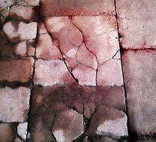13th Century abbey floor tiles by Martyn Franklin