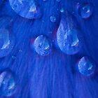Blue Rain by Anne Gilbert