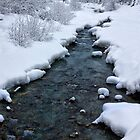 Fitzsimmons Creek in Winter by Charles Kosina