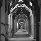 Tunnel Vision by versutia