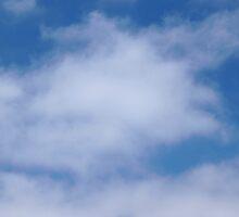 Clouds by Henrik Lehnerer