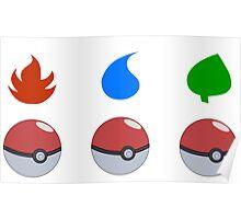 Pokemon - Starter Choice Poster