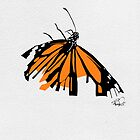 Fragile Monarch Butterfly  by Rachel Counts
