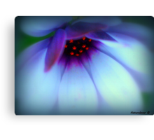 You Light Up My Life............ Canvas Print